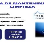 Empresa de mantenimiento y limpieza: Bargas Siglo XXI SL