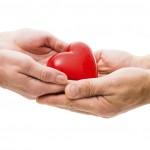 Altruismo en la cesión de sangre y órganos