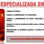 POBLEMAS POR LA CAIDA TARDIA DE LAS HOJAS EN MADRID