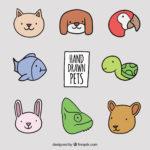 TENENCIA DE ANIMALES DOMÉSTICOS EN LAS COMUNIDADES DE PROPIETARIOS: DERECHOS Y OBLIGACIONES